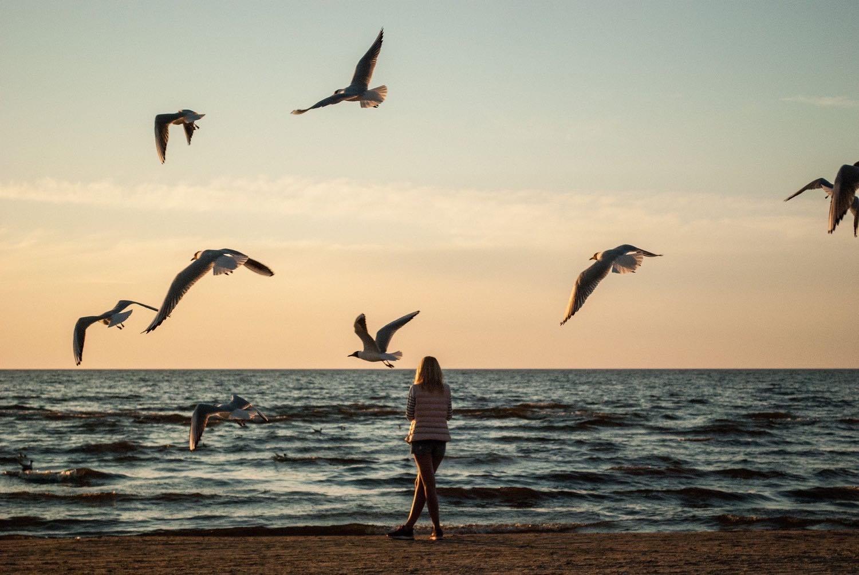 早起きで人生は変わるのか-早起きチャレンジします-